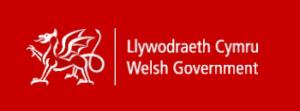 Welsh Government Testimonial