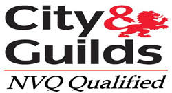 City & Guilds/ NVQ3 Trained Engineers